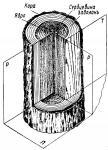 Основные цели Тепловой обработки древесины