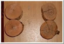 Вакуумная пропитка древесины