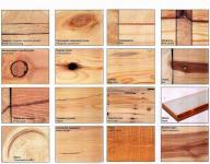 Периферийная древесина под корой