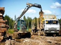 Деловая древесина цена