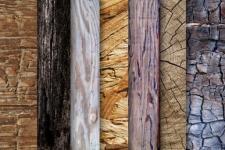 Где покупать обработанную древесину?